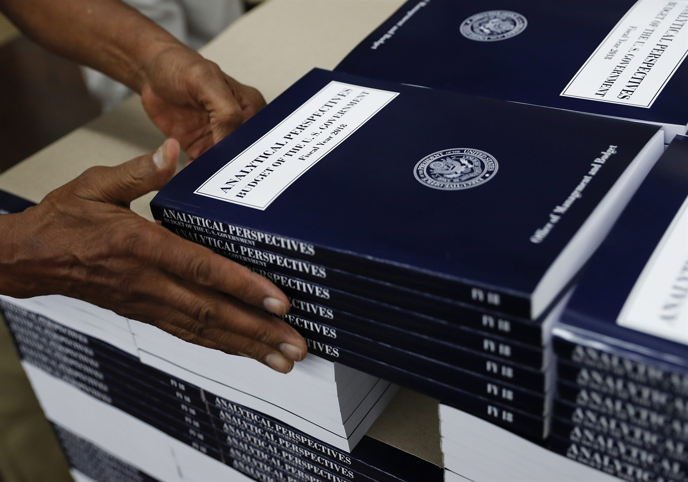 Trump budget slashes safety-net programs