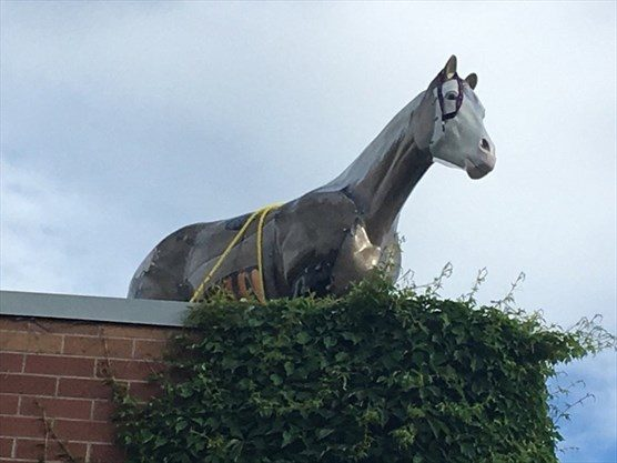 Youths apprehended after horse statue removed in Erin