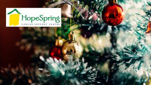 HopeSpring Cancer Support Centre: Holiday Tour of Homes