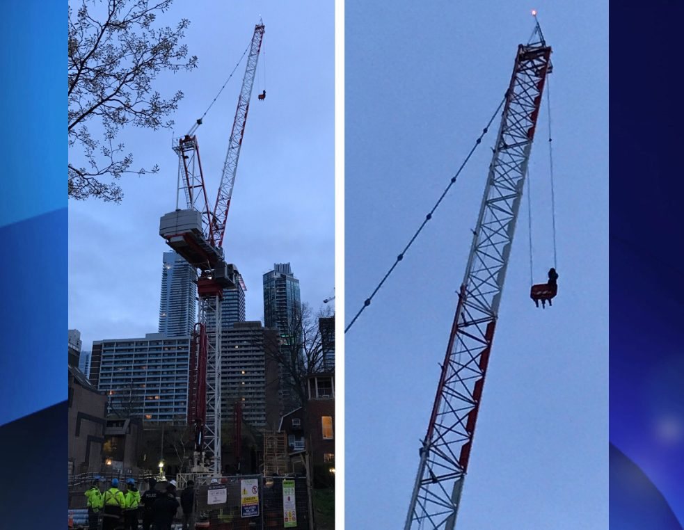 Rescue underway to rescue woman stuck on crane in downtown Toronto